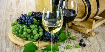 În atenția vinificatorilor amatori din raioanele Cahul, Cantemir și Taraclia
